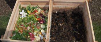 Материалы которые можно использовать для компоста